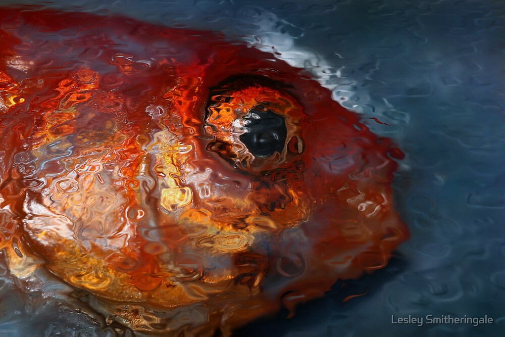 Goldfish Abstract by Lesley Smitheringale