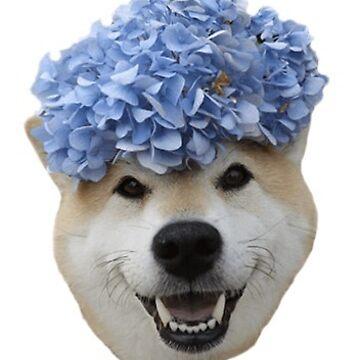 Happy flower dog by evelyngruen