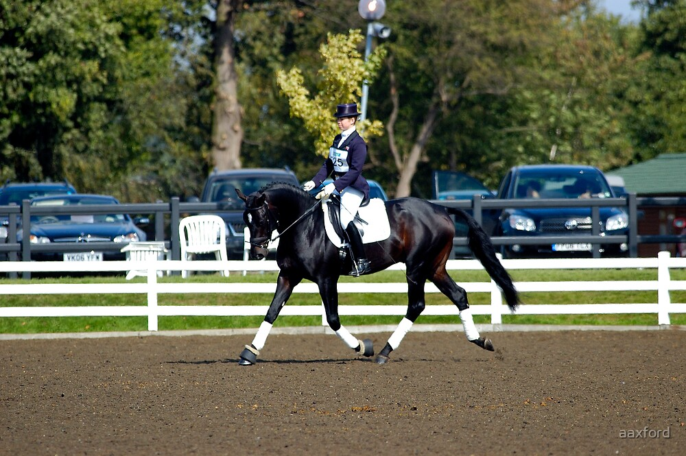 2007 BHS British Dressage by aaxford