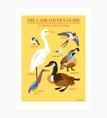 The Carb Lover's Guide to Identifying Birds by Shape Art Print