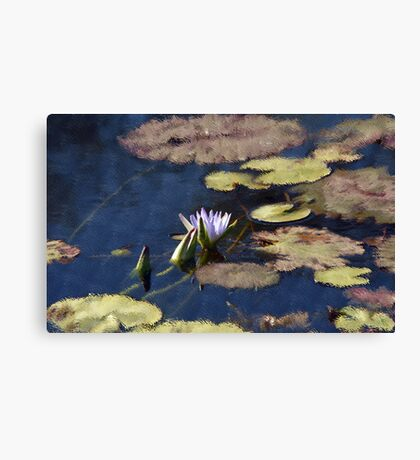 Waterlilies on the Lake Canvas Print