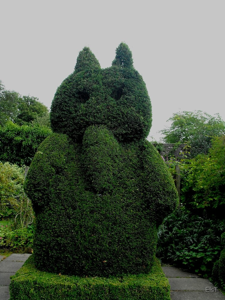 Topiary At Greenbank Gardens, Glasgow by ElsT