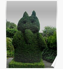 Topiary At Greenbank Gardens, Glasgow Poster