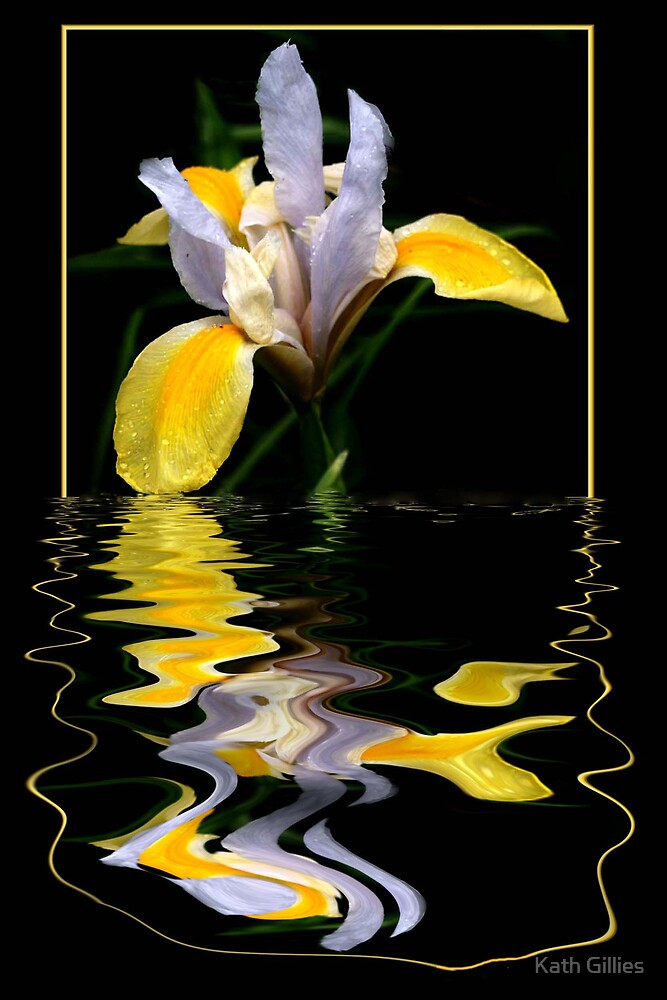 Golden Iris by Kath Gillies