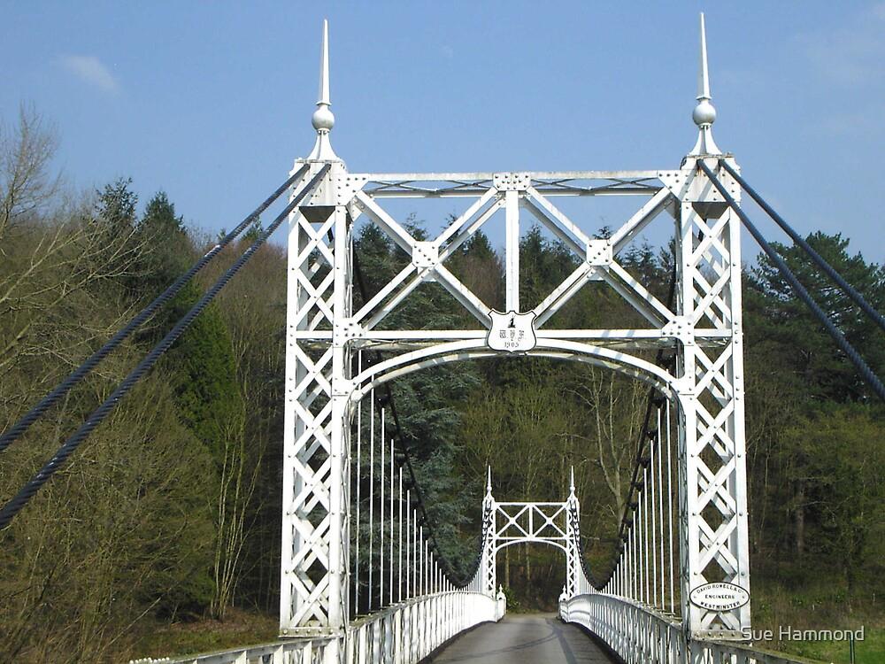 White Bridge by Sue Hammond