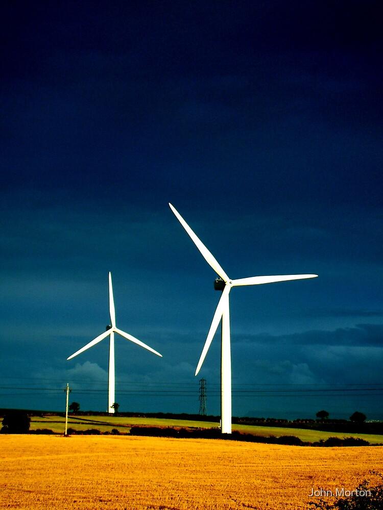 Renewable? by John Morton