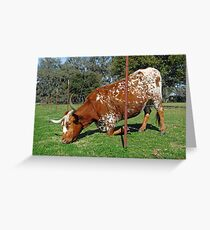 The Grass is Always Greener on the Other Side of the Fence Greeting Card