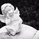 The Tiny Angel by Scott Mitchell