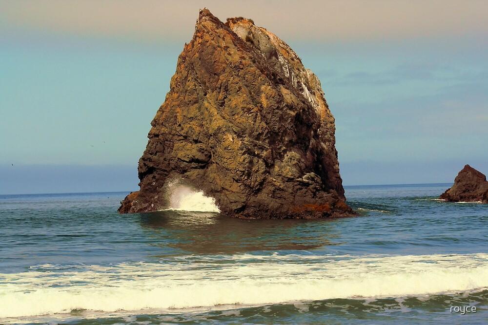 Ocean by royce