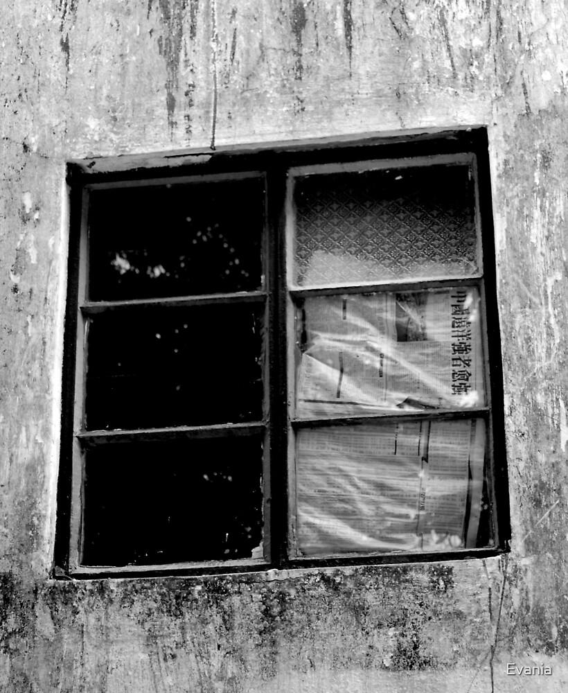 window by Evania