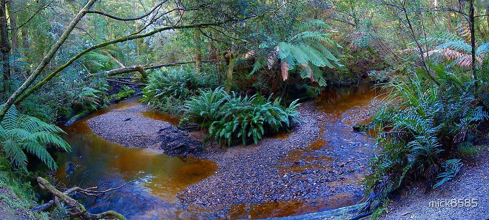 Below Hogarth Falls - Strachan by mick8585