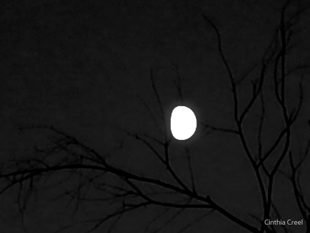 Winter Moon by Cinthia Creel