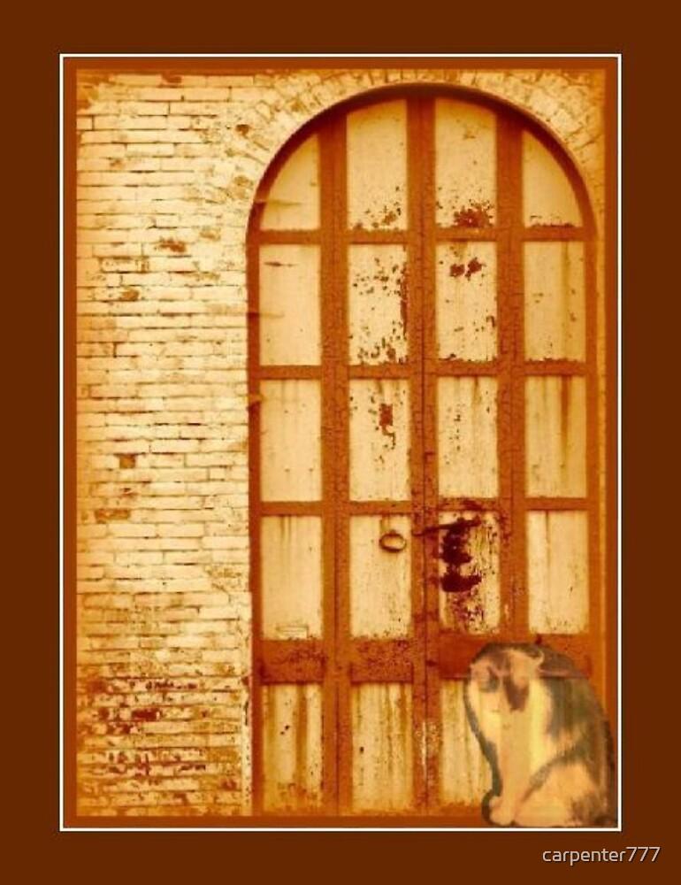 The door by carpenter777