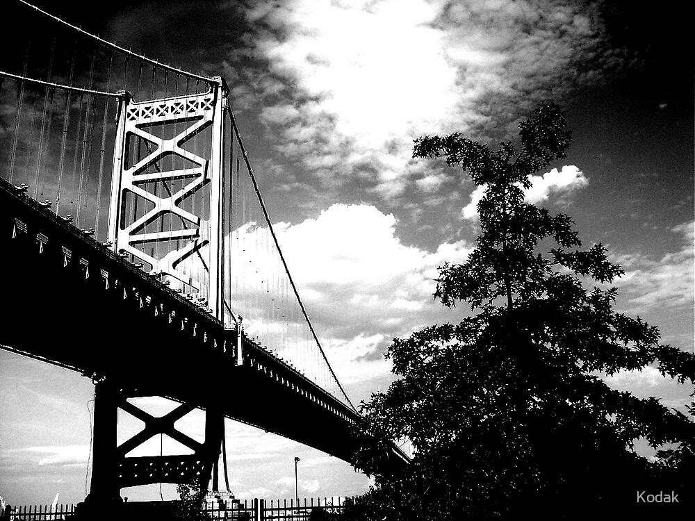 Black and White Bridge by Kodak