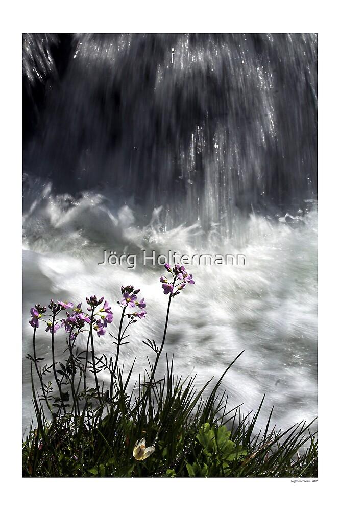 Spring by Jörg Holtermann