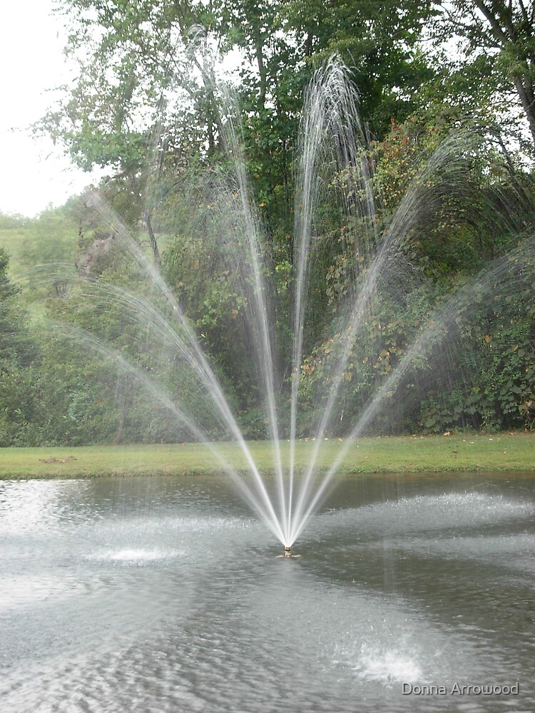Fountain 3 by Donna Arrowood