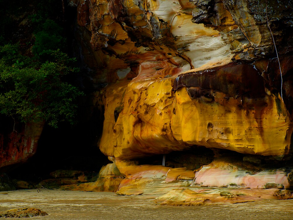 Bako National Park by diddle