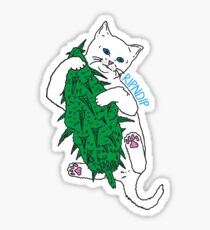 Vegan Cat Sticker