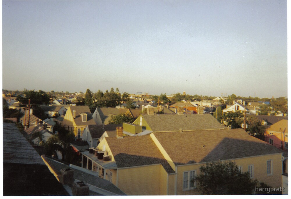 Rooftops of the Marigny by harrypratt