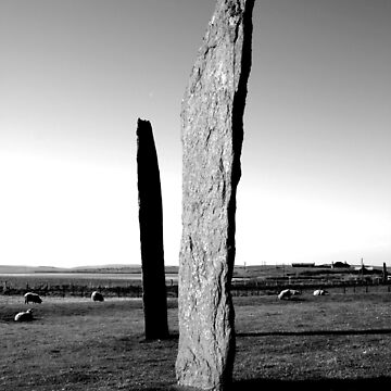 Stones of Stenness - and a few sheep by bluestarbow