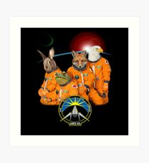 The Lylat Space Program Art Print
