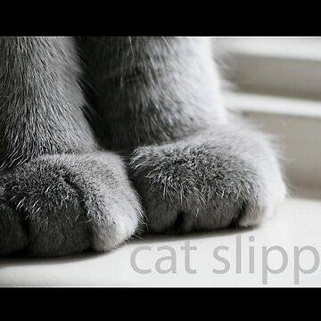 Cat Slippers by Sharon
