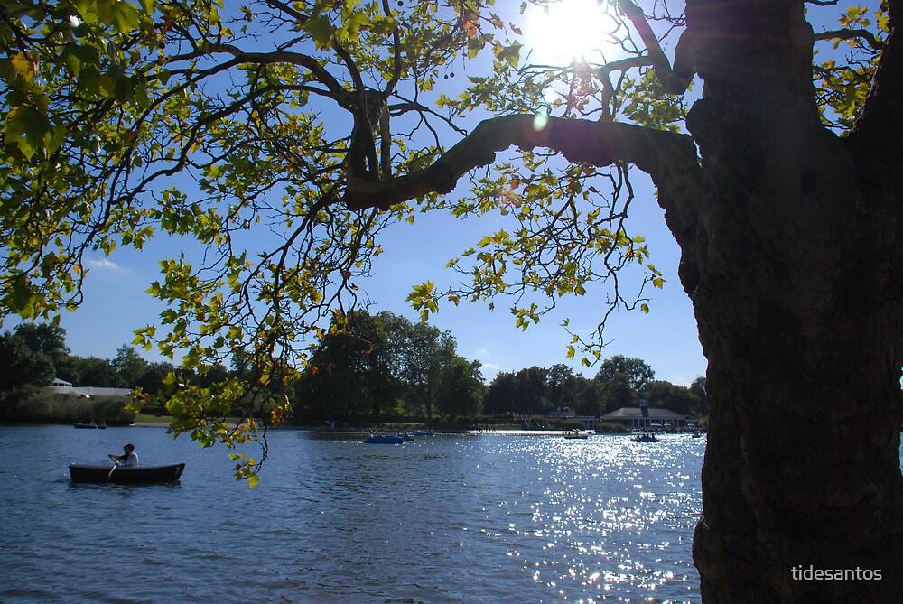 Lake by tidesantos
