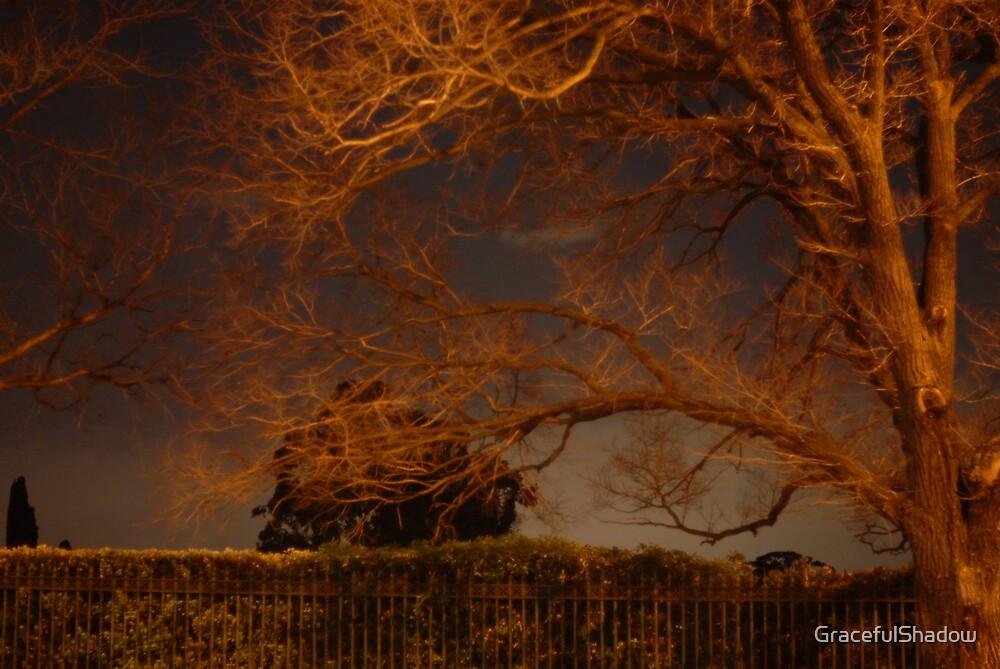 Urban Landscape by GracefulShadow