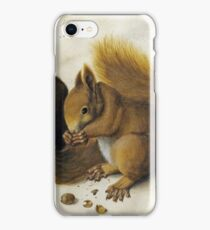 Albrecht Durer - Two Squirrels, One Eating A Hazelnut iPhone Case/Skin