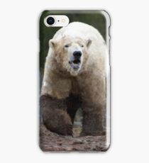 Scotlands Polar Bear iPhone Case/Skin
