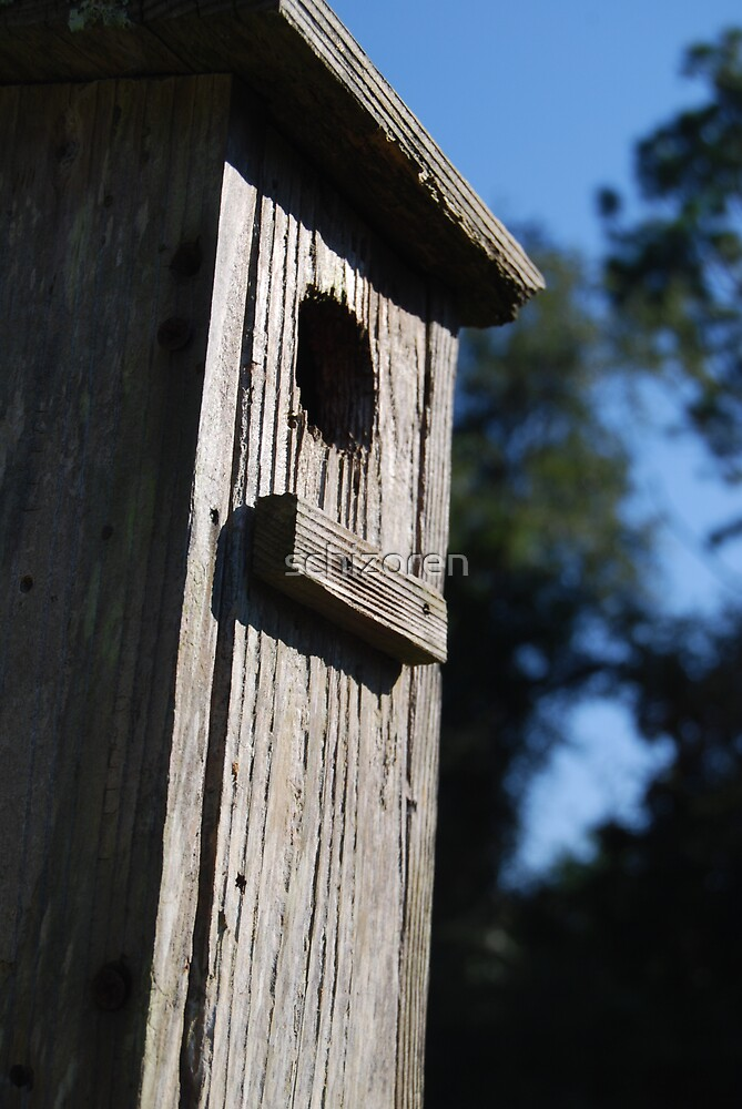 birdhouse by schizoren