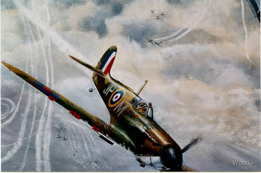 Spitfire detail by Woodie