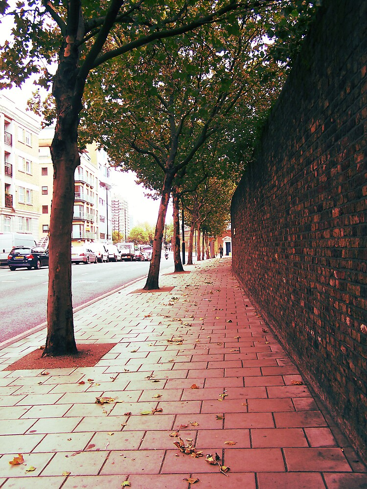 Autumn Alone by Faizan Qureshi