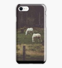 Horses in Country Field Three Horses Photograph Horse Photography Fine Art iPhone Case/Skin