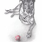 dog with red ball drawing by Mike Theuer