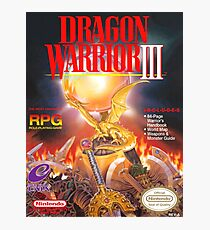 Dragon Warrior 3 Photographic Print
