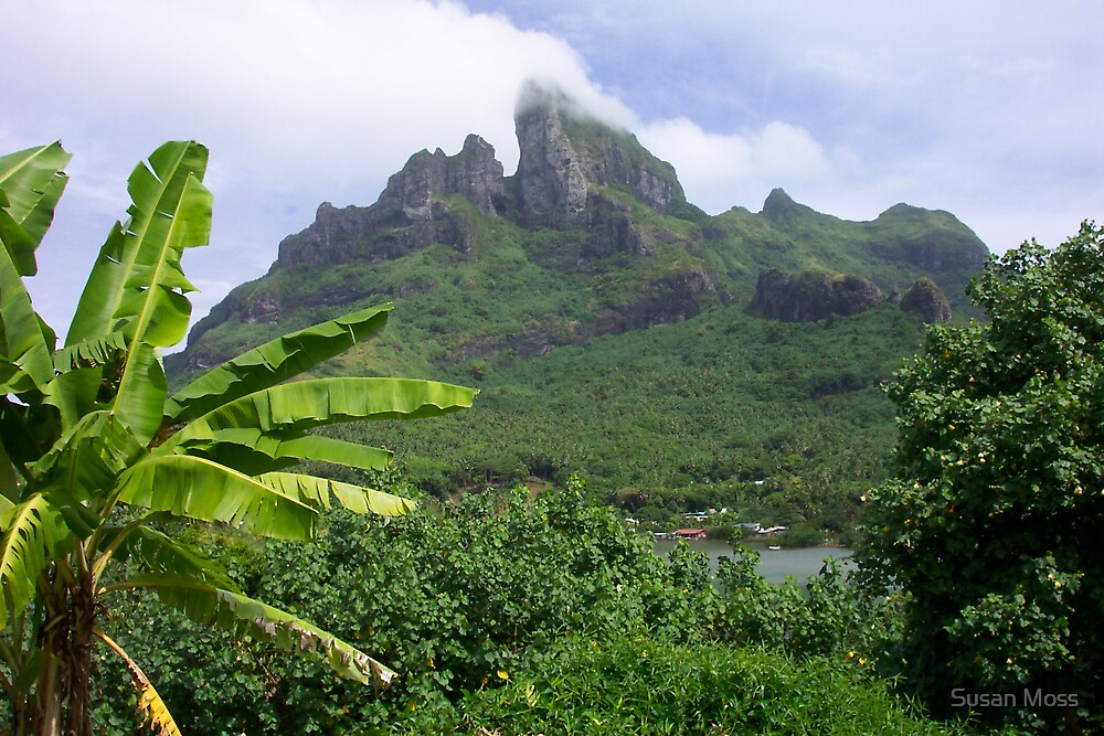 Tropical Tahiti by Susan Moss