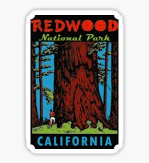 Redwood National Park California Vintage Travel Decal Sticker