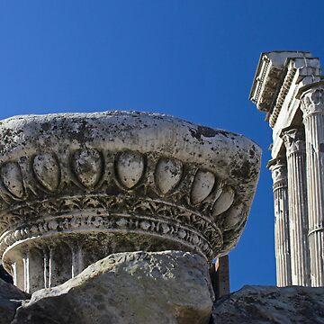 Rome - Forum Romanum by Gremlin