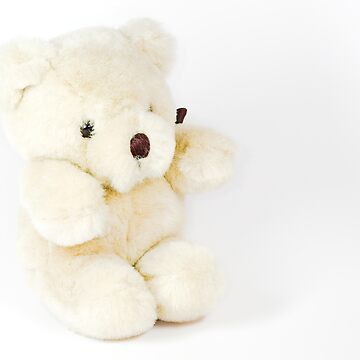 Teddy Bear by Gremlin