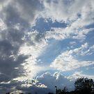 Gibside Sky by Richard Winskill