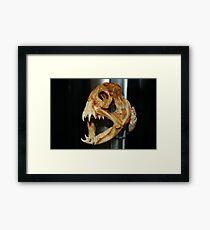 Jaws!! Framed Print
