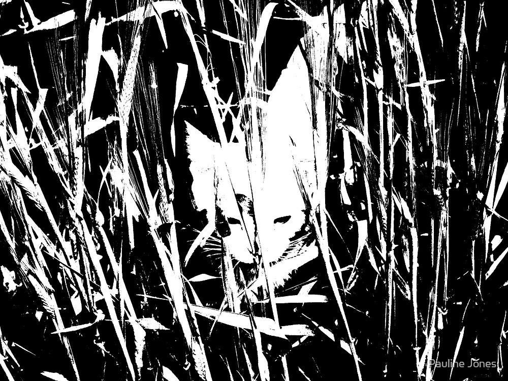 Cat in the Barley by Pauline Jones
