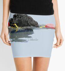 Minifalda Perro de agua portugués recuperando una línea de flotación