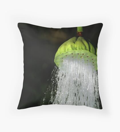 Collaborative Shower Throw Pillow