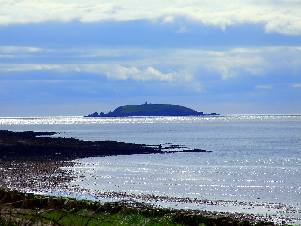 Capel Island by Pauline Jones