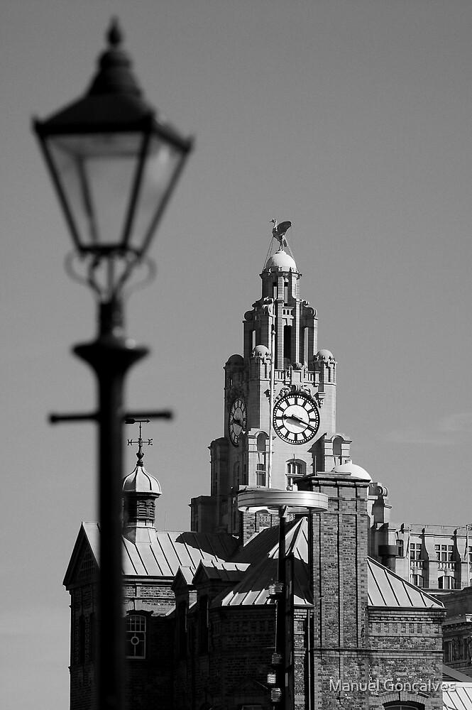 Liver Building in Black and White by Manuel Gonçalves