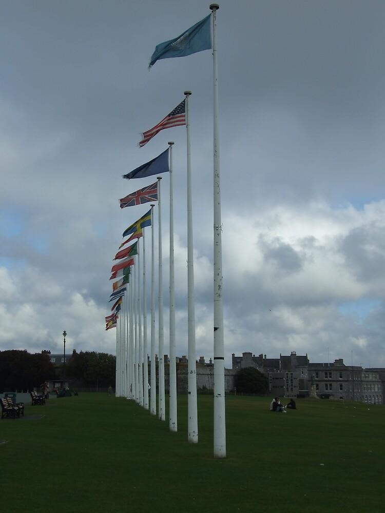 flag poles by matjenkins