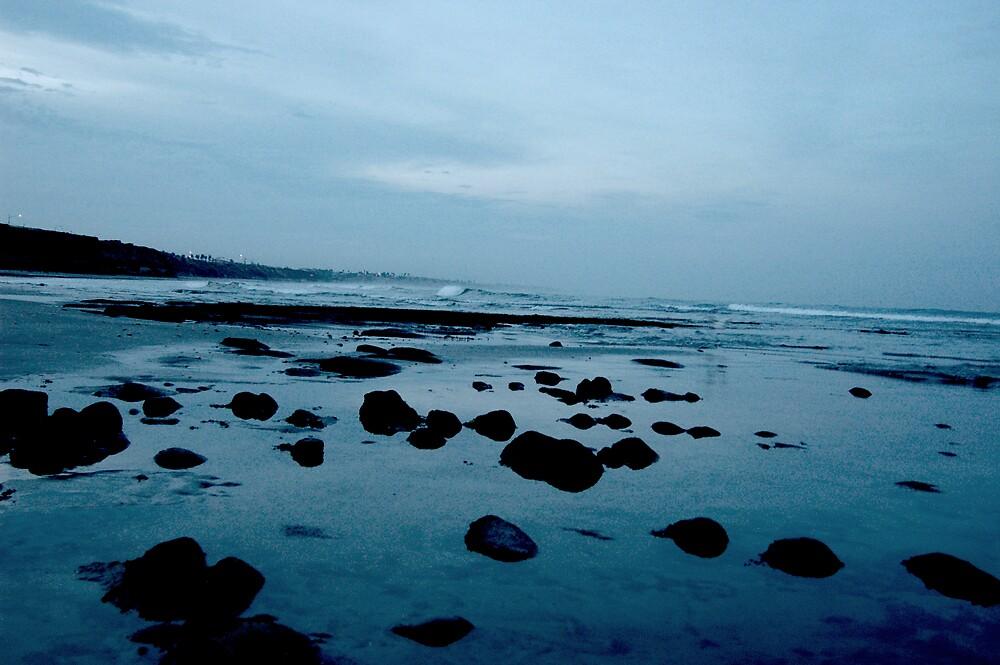 Blue Morning Tidepools by Daniel Nicolas