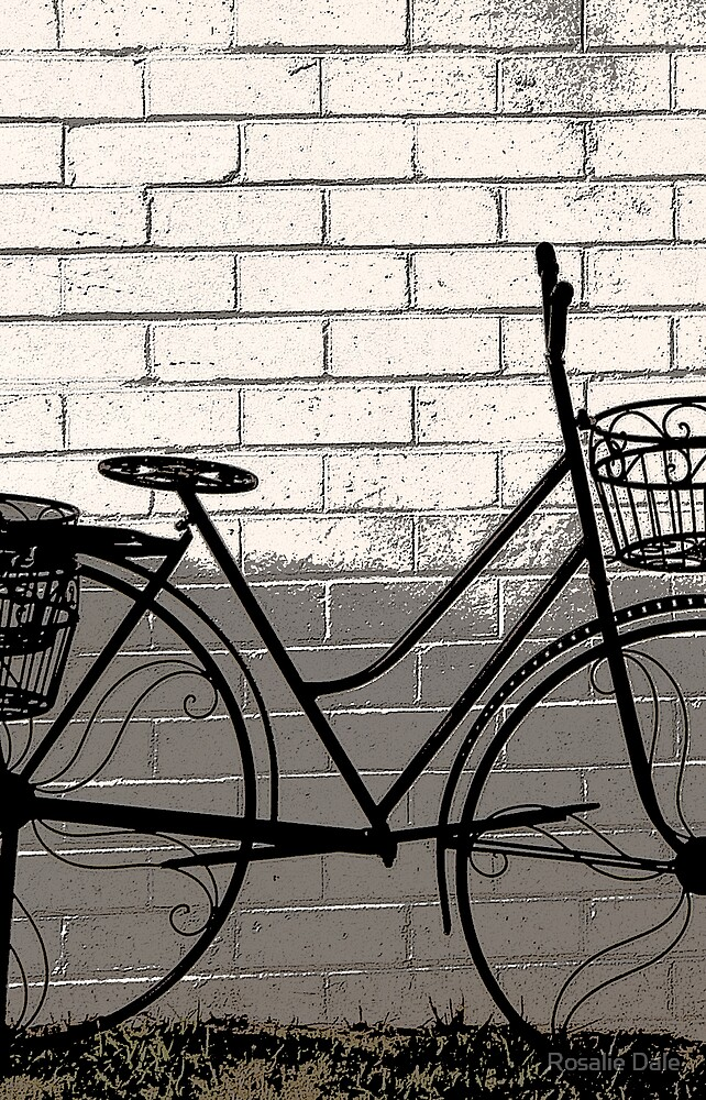 The bike . . . by Rosalie Dale